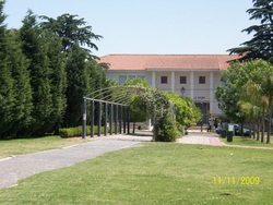 Las glorietas en el Parque Urbano y la Escuela Normal de fondo